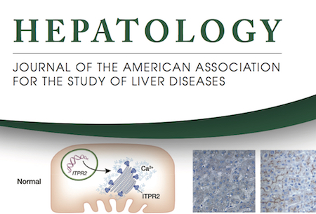 Hepatology journal cover