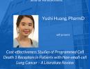 POP Seminar Announcement: Yushi Huang
